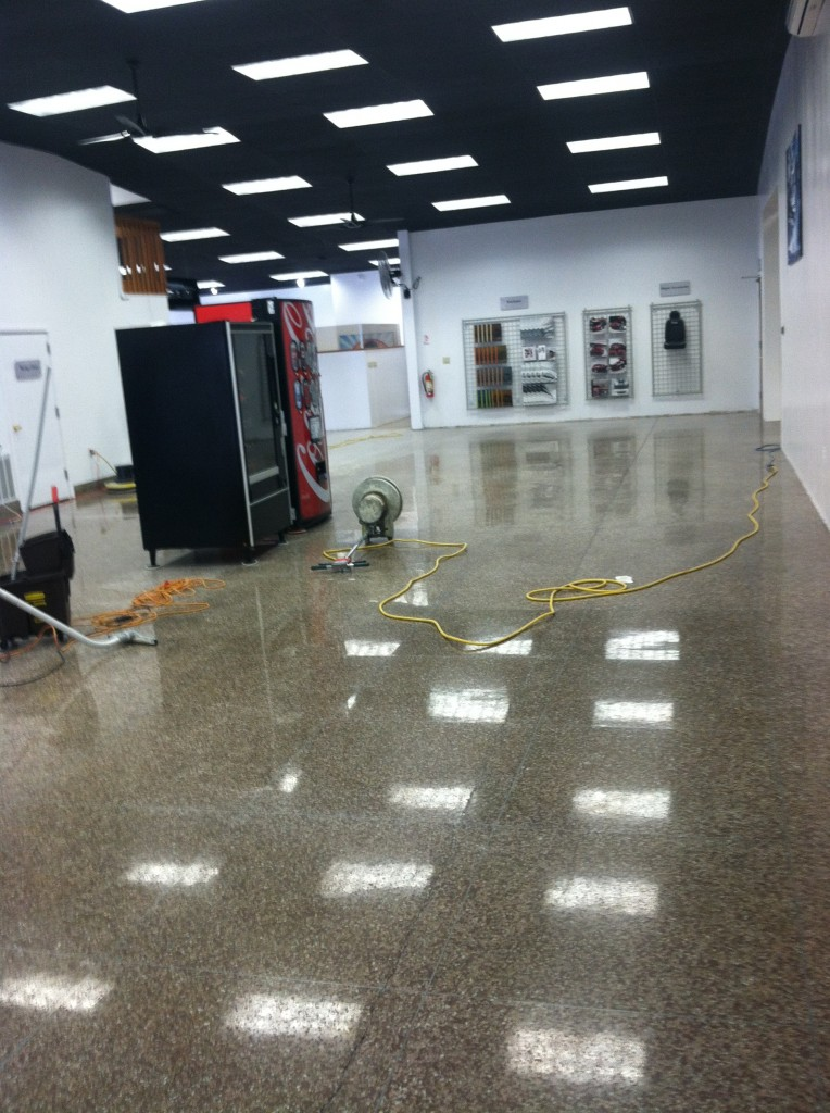 dealership showroom floors cleaned
