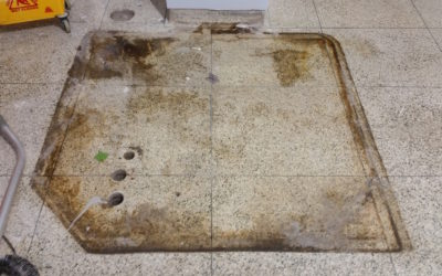 Can terrazzo floor damage be repaired?