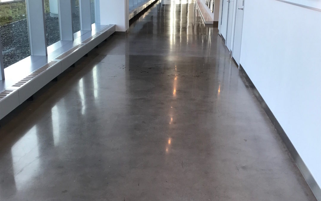 Polished Concrete Floor At New Balance In Allston Ma